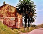 In vendita le Case Cantoniere. All'asta quelle nei territori di Salemi, Marsala, Castelvetrano…