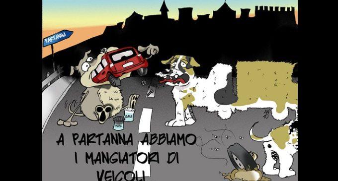 Barthamnah: il sindaco, i cani vaganti e il pifferaio magico