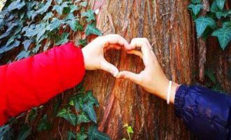 """Legambiente, prosegue la """"Festa dell'albero"""": appuntamenti a Vita e Calatafimi"""