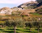 """Storia di un bandito della valle del Belìce, Salvatore Ponzio, detto """"Pilusu""""."""