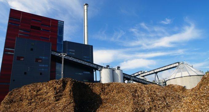 Impianti biomasse a Salemi e Modica: Azienda e amministratore condannati a restituire 248 mila euro