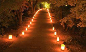 Dai Lupercalia alla Candelora: la festa della purificazione e della fertilità