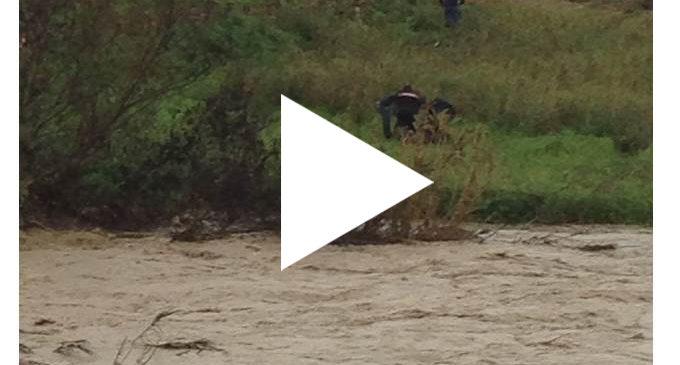 [VIDEO] Carabinieri salvano uomo partannese dal fiume Modione