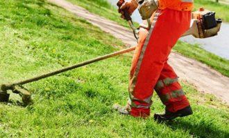 Santa Ninfa: verde pubblico? Ci pensano le aziende agricole