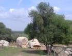 Escursione alle Cave di Cusa, sinergia tra gruppo archeologico e Pro Loco