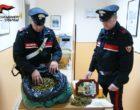 Possedeva oltre un chilo e mezzo di marijuana. 31enne in stato di arresto