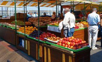 Partanna, si inaugura il mercato del contadino. Bulgarello: in progetto anche eventi enogastronomici