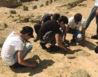 Facoltà di archeologia di Agrigento a rischio chiusura. Palermo taglia i corsi