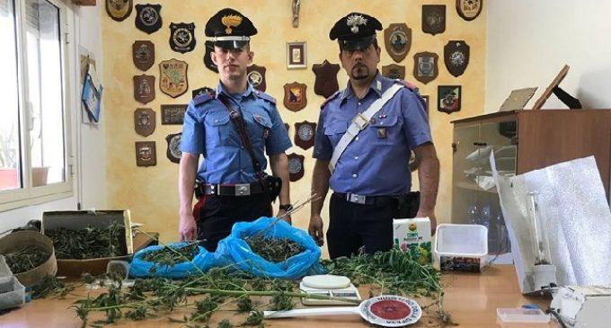 Droga per oltre mille euro, arrestato un giovane di Castelvetrano