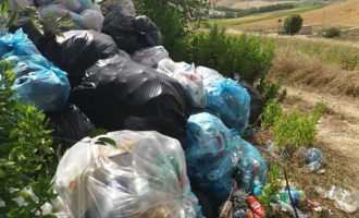 """Parco archeologico di Segesta: una discarica """"autorizzata"""" di rifiuti tra cultura e turismo"""