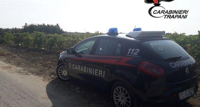 Un 87enne rubava uva con 3 vecchi amici. Scattato l'arresto da parte dei carabinieri di Marsala