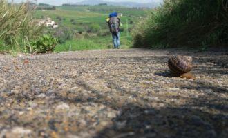 Ben 44 giorni a piedi per attraversare l'intera Sicilia. Si parte per l'Antica trasversale sicula
