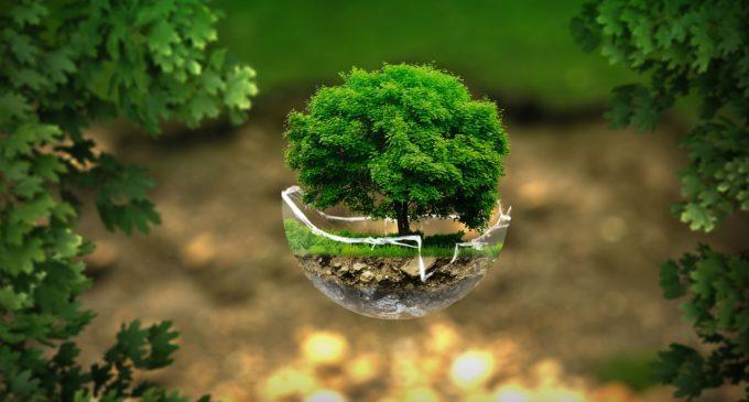 #EcoSismabonus casa: Governo deve puntare su Ecobonus e Sismabonus