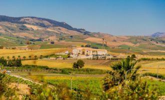Accordo tra Tenute Orestiadi e La Gelsomina, realtà del territorio etneo