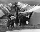 Coordinamento dei sindaci scrive a Mattarella per chiedere un incontro