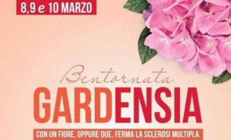 """Salemi, in piazza con """"Bentornata Gardensia"""" l'iniziativa per combattere la sclerosi multipla"""
