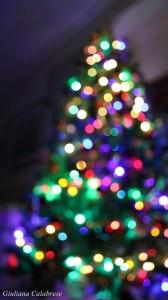 A_Natale_tutte_le_luci_conducono_a_casa-Giuliana_Calabrese