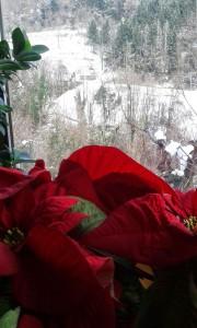 Scatti_di_Natale-Caterina_Parla